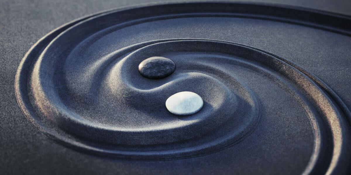 Wat kan jij leren van Yin en Yang